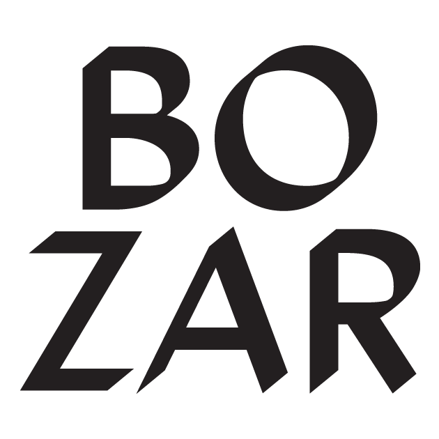 BOZAR, Young Talent in Action partner